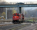 CN 4022